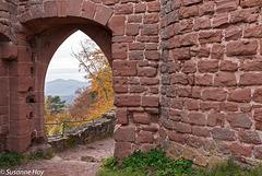 Tor der Ruine Neuscharfeneck