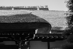 Thatched roof of a temple