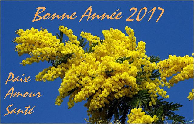 Meilleurs Voeux pour 2017 ...