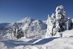 Mount Baker in January