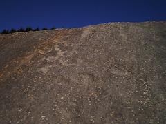 Dinosaur footprints.
