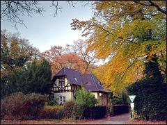 Herbstlicher Stadtwaldeingang