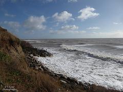 Castlehaven, Niton