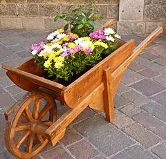 Oulx : la carriola fioriera - (726)