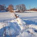 Un hiver à la ferme