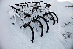 Lofoten, Leknes, Morning ride?