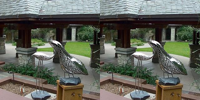 LA County Arboretum stereoscopy 2