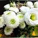 White blossoms... ©UdoSm