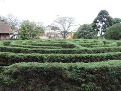 Verda labirinto.