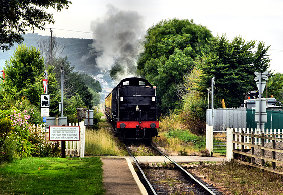 The train now approaching Dunster Station....