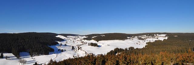 Aussicht vom Riesenbühlturm (© Buelipix)