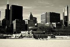 Morning Dog Walk - City of Chicago