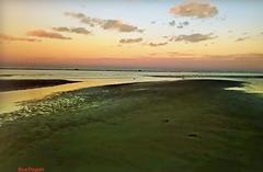 Bassa Marea. Alba sull' Adriatico