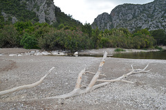 Olympos, Canyon Mouth and the Remains of Tree Branches