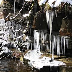 IMG 7567 ice