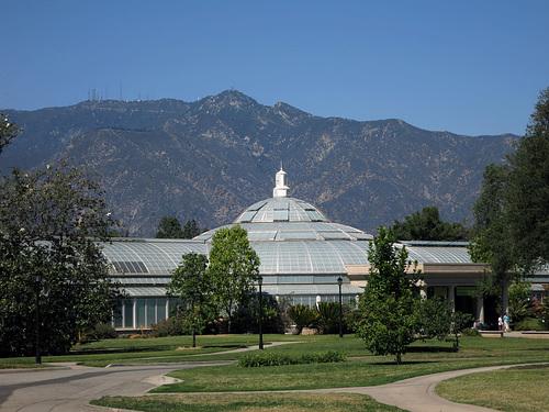 Huntington Gardens (0287)