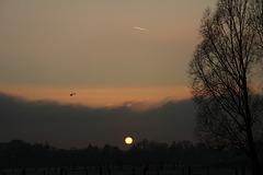 Himmel 29/50 - Farewell