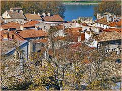 Avignon : il centro storico sulla sponda del Rodano presso il ponte di St.-Benezet - lato nord