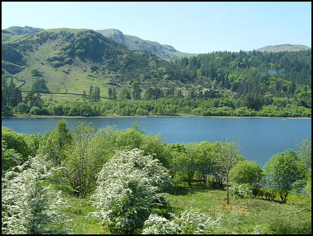 Thirlmere in spring