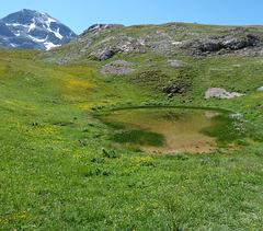 Aurevoir les Alpes / Bye bye the Alps