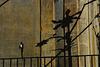 Balkon mit Lampenfassung