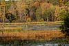 Big Marsh Lake