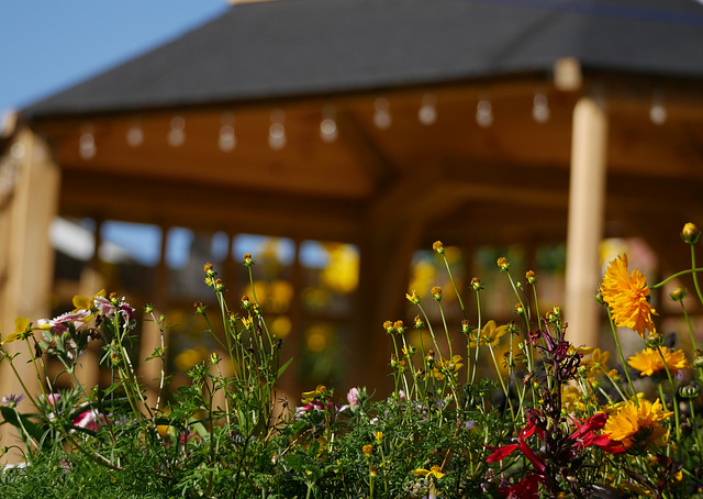 Flowers And Arbour