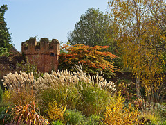 Autumn in the Bishop's Palace Gardens