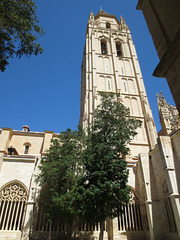 Catedral Tower