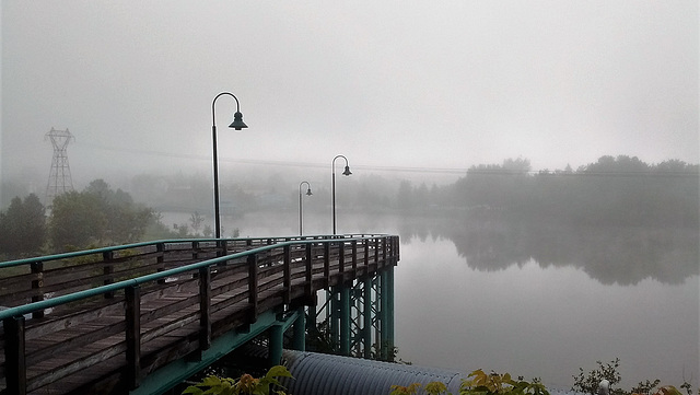 Petit matin brumeux / Early misty morning