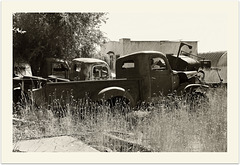 Abandoned house with trucks