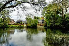 River Stour at Blanford Forum.
