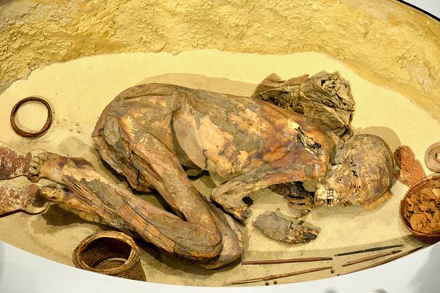 Turin 2017 – Museo Egizio – Early mummy