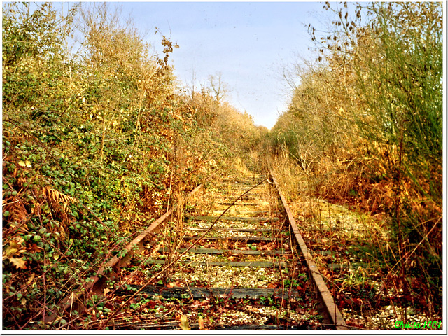 Abandoned rails to nowhere
