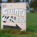 The Grumpy Cow
