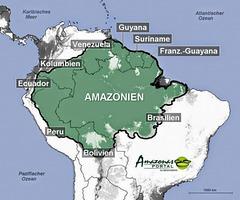 Amazonio