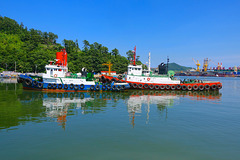 Tugs in Okpo harbour