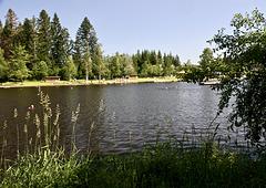Moorsee in Lindenberg im Allgäu