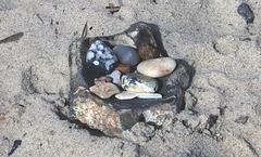Steine in der Schale