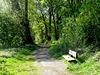 HBM Forest Entrance