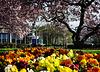 Die Landesgartenschau ist eröffnet - The horticultural show is now open