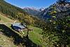 Bauernhaus im Herbst - Farmhouse in autumn (PiP)