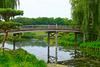 Japanese Bridge, Chicago Botanic Garden