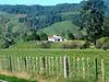 Rural View.