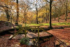 HFF  -  A simple Autumn fence