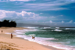 Oahu North Shore - Surfers Paradise! - Dec. 1980
