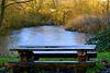 HBM ....By frozen pond