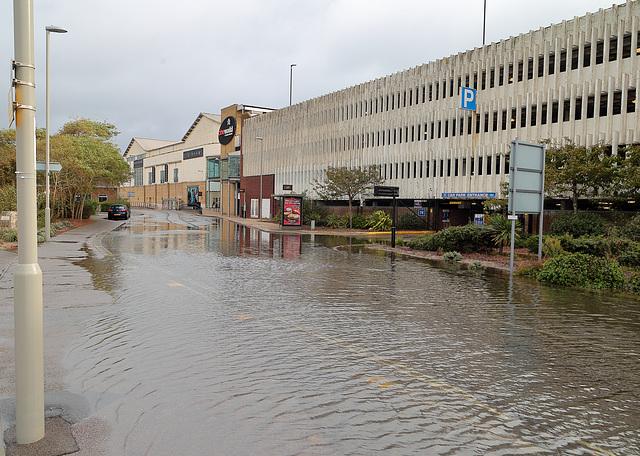 EOS 6D Peter Harriman 09 36 59 03988 Flooding dpp