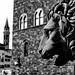 Florence Piazza Della Signoria Lion 1 XPro1 mono