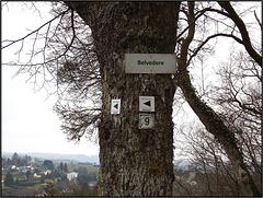 Burg Manderscheid, Manderscheid 020